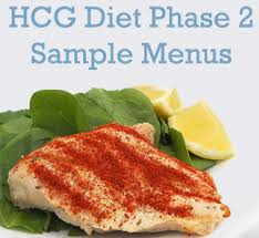 spruced up hcg phase 2 sample menu do it yourself hcg do it