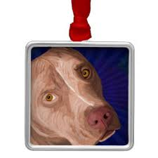blue nose pit bull ornaments keepsake ornaments zazzle