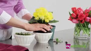 simple small flower arrangements home design judea us