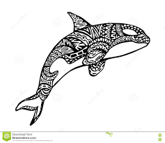 ethnic animal doodle detail pattern killer whale zentangle