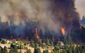 Wildland Fire News Washington State by Over Half Of Washington Homes Most At Risk Of Wildfire Are In