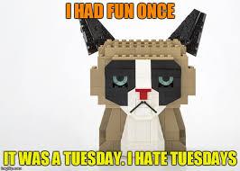 Grumpy Cat Meme I Had Fun Once - grumpy cat lego week sponsored by juicydeath1025 imgflip