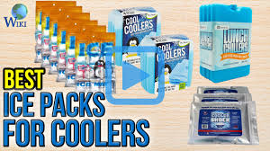 top 10 ice packs for coolers of 2017 video review