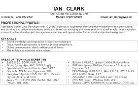 Software Developer Resume Sample by 19 Cover Letter For Customer Care Executive Actor Cv Sample