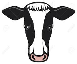 cow face outline clipart clip art library