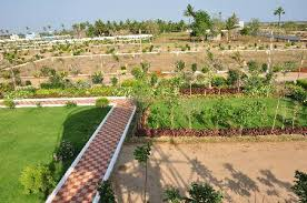 layout land tips for buying gram panchayat approved land