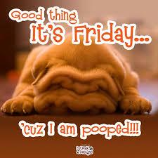 Finally Friday Meme - good thing it s friday cuz i am pooped cartoon weekday