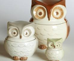 owl kitchen decor