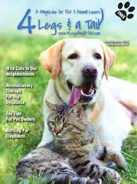 4 legs and a tail lebanon spring 2016 by 4 legs u0026 a tail issuu
