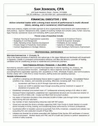 resume for internal audit position resume samuels jewelers