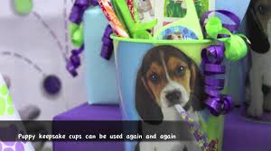 puppy party supplies puppy party supplies