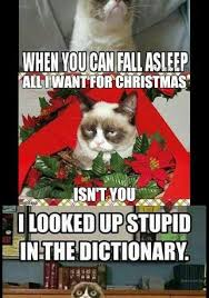 Best Grumpy Cat Memes - 7 funny grumpy cat memes collection from around the world magnerd