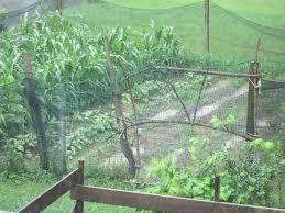 Urban Garden Woodland Hills - furrows low tech rain harvesting u2013 woodland urban farm