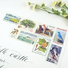 illustrated wildflower wedding invitations