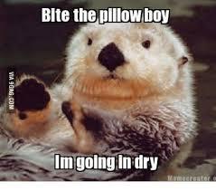 Otter Memes - sea otter meme otter best of the funny meme