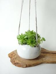 White Hanging Planter by Small Hanging Planter Spotted Milky White Hanging Planter