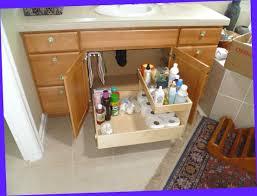 under sink organizer ikea why is under the kitchen sink storage ideas abrarkhan me