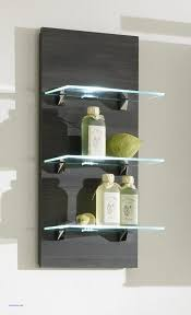 Decorative Wall Shelves For Bathroom Wall Decor Fresh Decorative Bathroom Wall Shelves Decorative