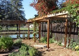 Vine Trellis Ideas Kiwi Trellis Plans Home Decorating Interior Design Bath