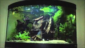 nice modern brown corner aquarium fish tanks that can be decor
