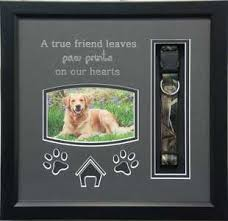 dog memorial pet memorial shadow boxes memories and more