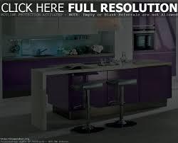 shelf organizer for kitchen cabinet kitchen decoration
