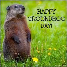25 happy groundhog ideas groundhog