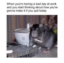 Bad Day Meme - 25 best memes about when your having a bad day when your