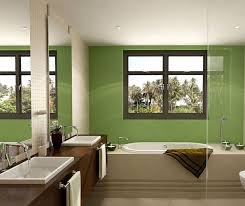 Wall Decor Bathroom Ideas 84 Best Green Bathrooms Images On Pinterest Bathroom Ideas