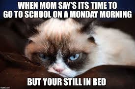 I Hate Mondays Meme - i hate mondays imgflip