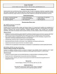 10 financial analyst resume examples financial statement form