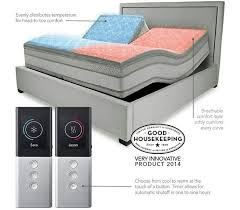 Dual Adjustable Beds 59 Best Adjustable Beds Mattresses Images On Pinterest