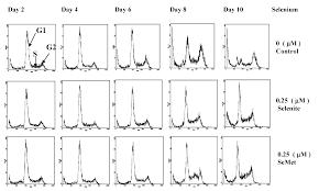 molecules special issue selenium and tellurium chemistry
