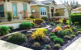 Ideas Landscaping Front Yard - lovable no grass landscaping ideas landscape ideas for front yards