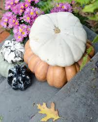 halloween front door the chronicles of home