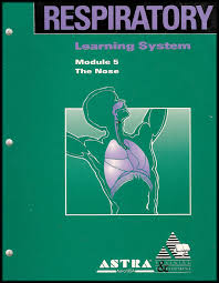 cheap respiratory system anatomy find respiratory system anatomy