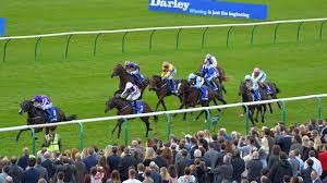 Images Of Racing Flags Us Navy Flag Leads Home Stunning Clean Sweep For O U0027brien Horse