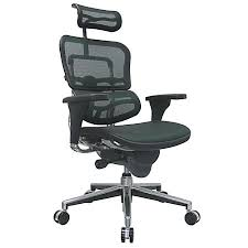 Officemax Chairs Raynor Ergohuman High Back Mesh Chair 52 H X 26 12 W Chrome Frame