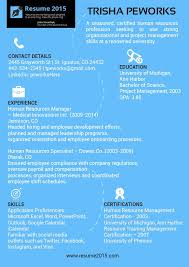 Resume And Resume 25 Unique Good Resume Format Ideas On Pinterest Good Cv Format