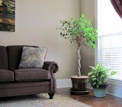 Living Room Corner Decor Articles With Small Living Room Corner Fireplace Decorating Ideas