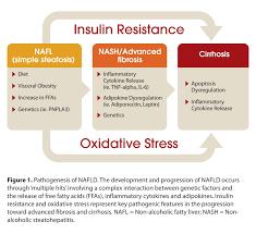 beyond hcv non invasive assessment of non alcoholic fatty liver