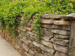 94 best rock walls images on pinterest rock wall gardens and