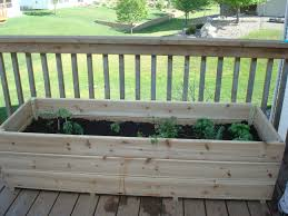 vegetable garden on the deck you bet my northern garden nothing beats fresh herbs right outside the kitchen door