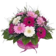 florist ocala fl blue creek florist gift shops 16900 west hwy ocala fl
