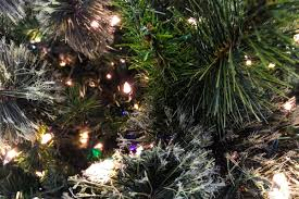 free stock photo of close up of christmas tree branches u0026 lights
