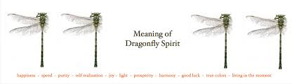 dragonfly spirit has a dragonfly spirit showed up in your