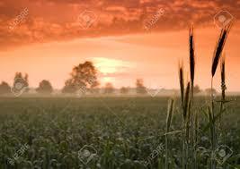 beatiful and calm sunrise colourful landscape stock photo