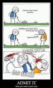 Pet Rock Meme - pet rock are real lol jokes funny stuff neowin