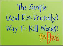663 best simple garden ideas images on pinterest simple garden
