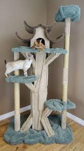 prestige cat trees 84 paradise cat tree reviews wayfair